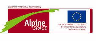 ialpine space