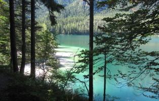 la ricchezza naturale dei parchi e riserve in Trentino