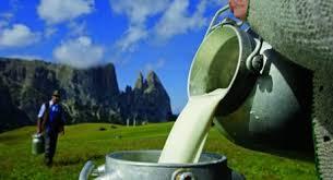 latte nel mondo e paesi privilegiati Ue