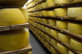 formaggi in stagionatura