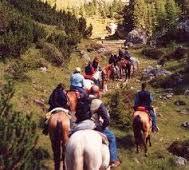 turismo equestre. ddl in Veneto