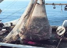 report osservatorio su distretto pesca