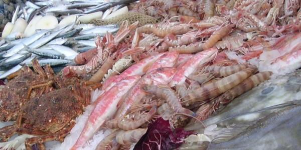 prodotti pesca in veneto