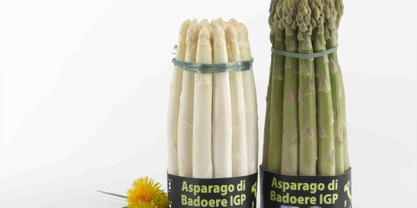 foto asparago