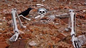 scheletro-vivo-in-mostra-un-padova
