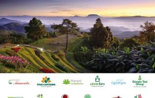 giardino-interna-1200x988-1500298002