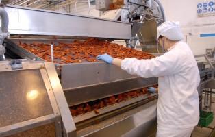 Lozzo Atestino (Pd) 19 febbraio 2009   Industria alimentare Valbona: le linee di produzione. © Franco Tanel