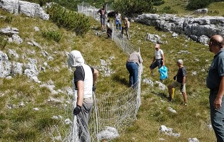 recinzioni-per-lupi