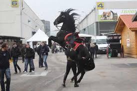 fieracavalli-max-barbe-impenna-il-cavallo-foto arch-