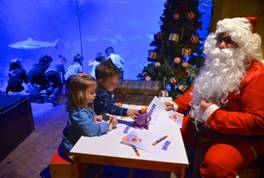 sea-life-aquarium-jesolo-per-natale