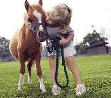 cavalo-e-bimbi-autistici-ippoterapia-ed-altro