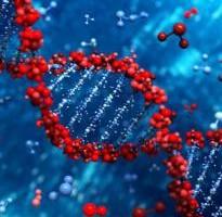 genoma_0