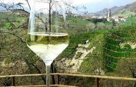 prosecco-vino-con-bollicine-delle-colline-trevigiane