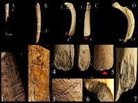 ossa-oorso-paleolitico-image_mini