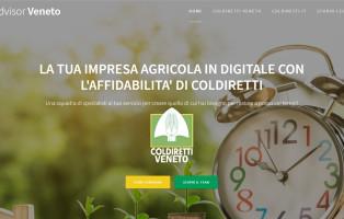webadv