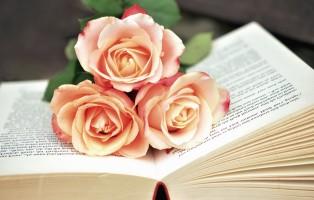 rose-diritto-autore-unesco-a-monza