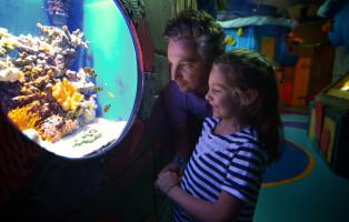 lido-di-jesolo-sea-life-aquarium_carnevale-2019__0928