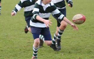 n_rugby_babini