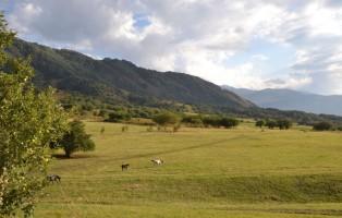 2016_diario-di-viaggio-foto-patrizia-boschiero-fbsr-768x512