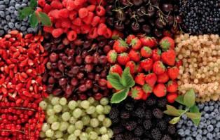 csm_prodotto_piccolifrutti_1__add400a92a